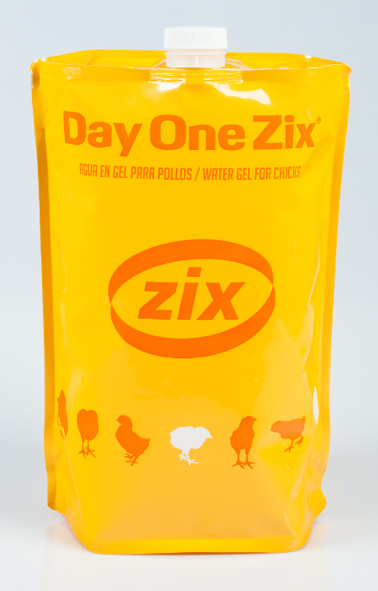 BBZIX presenta Day One Zix
