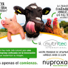 Nutritec International anuncia el lanzamiento de Nuproxa