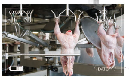 monitoring and control of waste in poultry slaughterhouses
