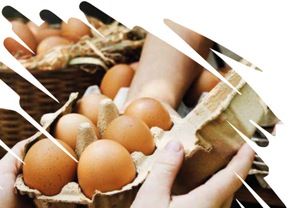 sale of eggs to the consumer