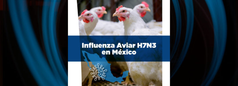 Ceva Influenza Aviar Mexico